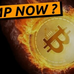 Don't Sell Until You Watch This | Why Bitcoin Crashed | And Free Leverage Trading Tips