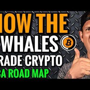 2021 Bitcoin Bull Run Bear Market Game Plans