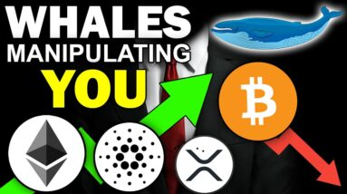 ATTENTION ALL CRYPTO HODLERS! WHALES MANIPULATING THE MARKET! HUGE NEWS!