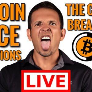 Bitcoin Crash Live: Altcoin Season 2021