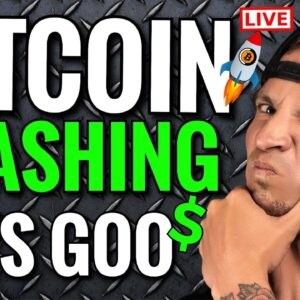 Bitcoin Crash Live: Shiba Price Predictions