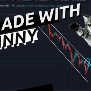 Bitcoin Recovery!!  or A Dead Cat Bounce | Lets See