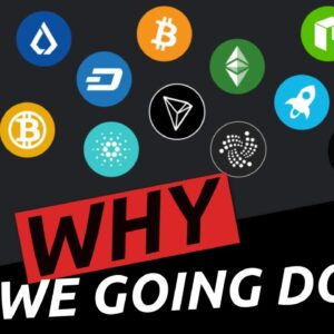 Massive Stock and Crypto Investing Warning | Why did We crash on Monday