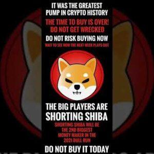 SHOULD I BUY SHIBA? Shiba Price Predictions May 2021