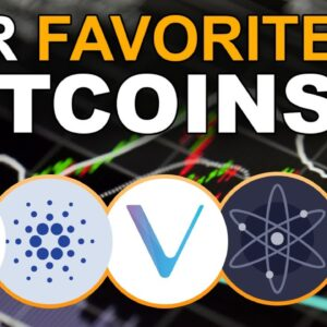 Altcoins with BEST Potential (Our Favorite Alt Holdings)
