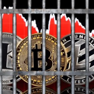 China Cancels Everyone Who Invests In Crypto Bitcoin Ect... What Should We Do | Buy Sell HODL