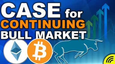 The Case for the Continuing Bull Market