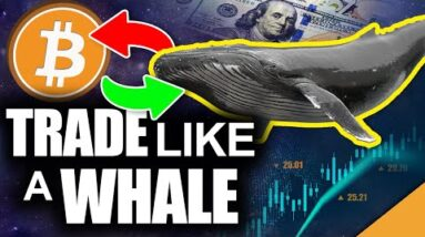 Trade Bitcoin Like a Whale (Best Way to Take BIG Crypto Profits)