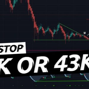 What Is Happening In Crypto Should You Be Worried Or Excited | XRP | LINK | ETH | BTC