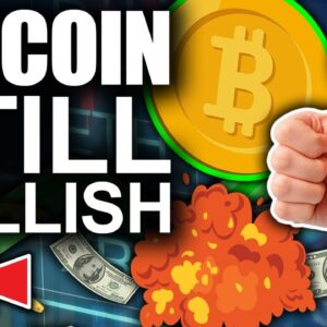 Bitcoin Is Looking EXTREMELY Healthy (2021 Bull Run Continues)
