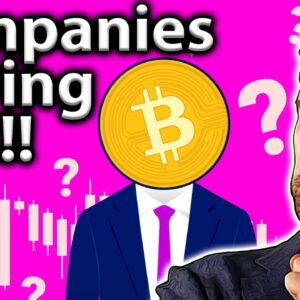 Companies BUYING BITCOIN!! What To Look Out For!! 👀