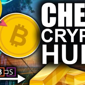 3rd Largest Whale Buys More Bitcoin!! (Millionaires Bargain Hunt Cheap Crypto)