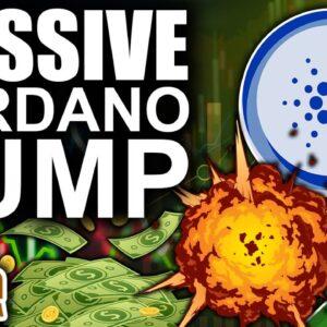 Massive Cardano Pump to $2.54 (Bitcoin & Crypto Flashing Bullish Signals)
