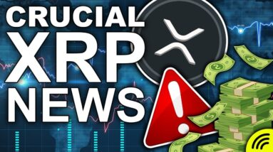Crucial XRP News! (Most Exciting Ripple Case Prediction)